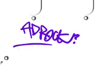 Authentic Ad-Rock  Autograph Exemplar